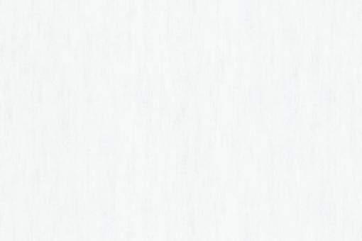 Обои Браво 81100BR07 виниловые на флизелиновой основе (1,06х10,05м)