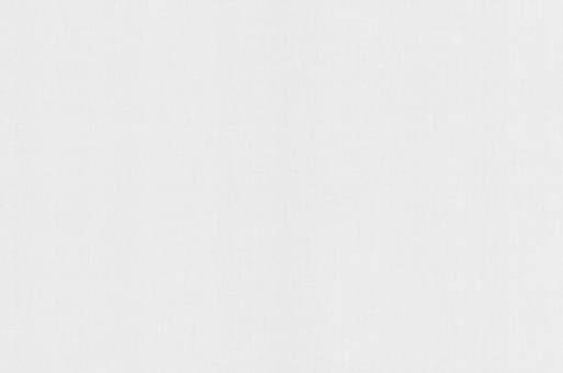 Обои Браво 81107BR00 виниловые на флизелиновой основе (1,06х10,05м)