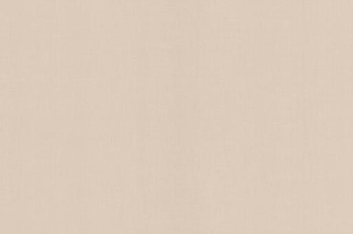 Обои Браво 81107BR04 виниловые на флизелиновой основе (1,06х10,05м)