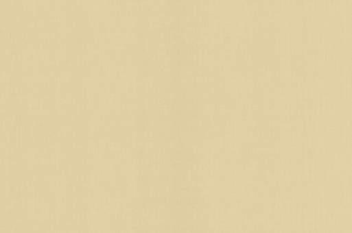 Обои Браво 81107BR06 виниловые на флизелиновой основе (1,06х10,05м)