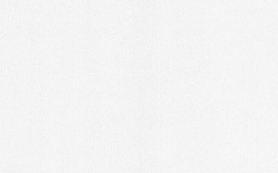 Обои Браво 81120BR10 виниловые на флизелиновой основе (1,06х10,05м)