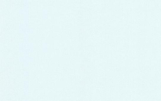 Обои Браво 81120BR17 виниловые на флизелиновой основе (1,06х10,05м)
