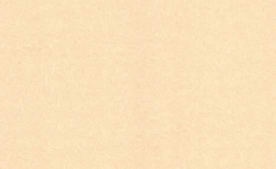 Обои Браво 81140BR12 виниловые на флизелиновой основе (1,06х10,05м)