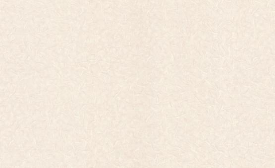 Обои Браво 81140BR14 виниловые на флизелиновой основе (1,06х10,05м)