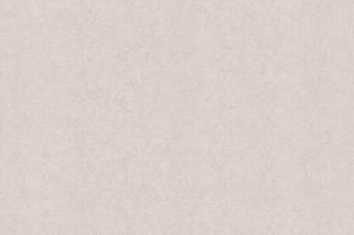 Обои Браво 81142BR14 виниловые на флизелиновой основе (1,06х10,05м)