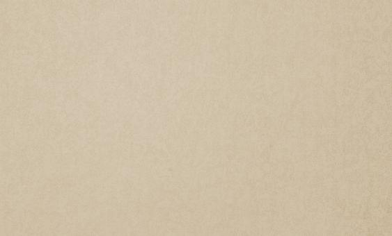 Обои Браво 81145BR13 виниловые на флизелиновой основе (1,06х10,05)