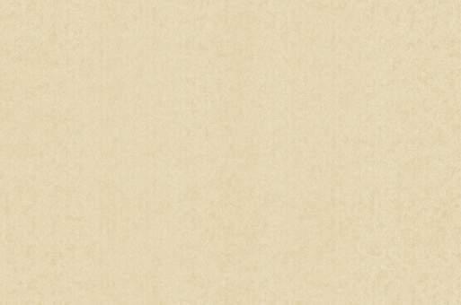 Обои Браво 81163BR33 виниловые на флизелиновой основе (1,06х10,05м)