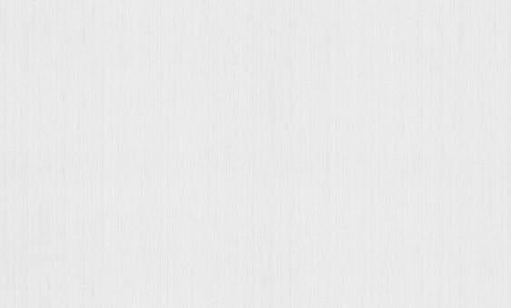 Обои Браво 81180BR20 виниловые на флизелиновой основе (1,06х10,05м)
