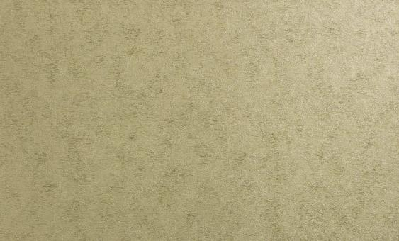 Обои Браво 81192BR38 виниловые на флизелиновой основе (1,06х10,05м)