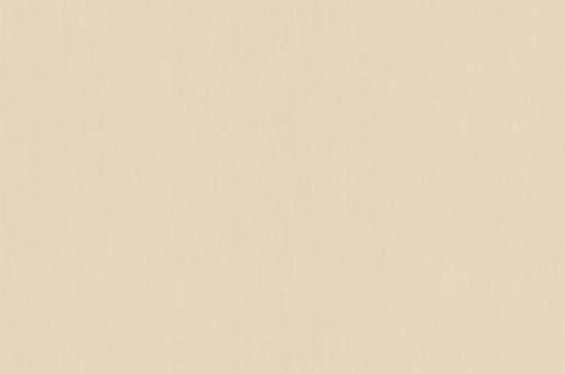 Обои Браво 81208BR43 виниловые на флизелиновой основе (1,06х10,05м)