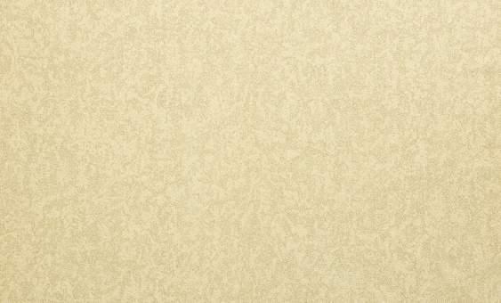 Обои Браво 81215BR47 виниловые на флизелиновой основе (1,06х10,05м)