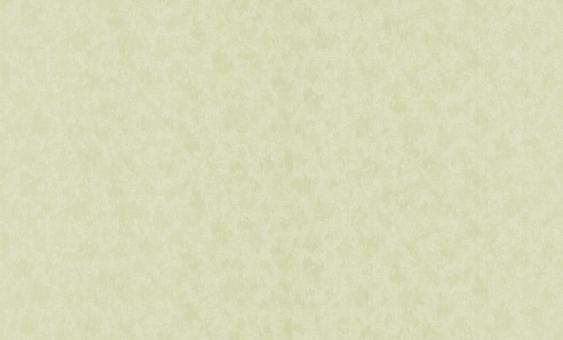 Обои флизелиновые СТАТУС 9022-03 (1,06х10,05м) опт