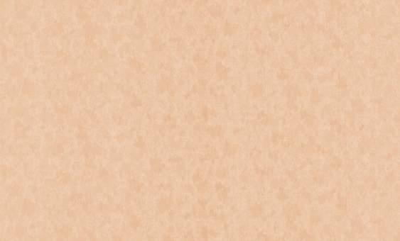 Обои флизелиновые СТАТУС 9022-05 (1,06х10,05м) опт