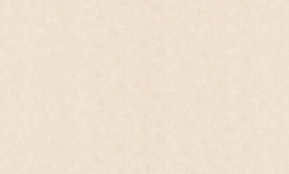 Обои флизелиновые СТАТУС 9023-03 (1,06х10,05м) опт