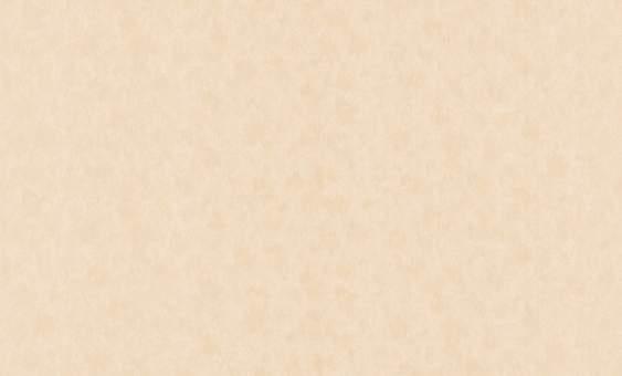 Обои флизелиновые СТАТУС 9023-05 (1,06х10,05м) опт