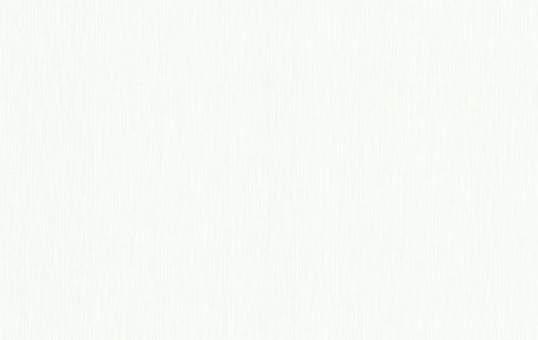 Обои флизелиновые СТАТУС 9049-20 (1,06х10,05м) опт
