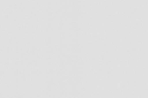 Обои флизелиновые СТАТУС 9082-20 (1,06х10,05м) опт