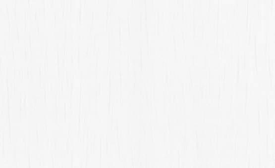 Обои Статус 9090-10 флизелиновые опт
