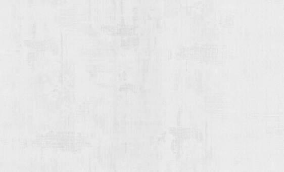 Обои Статус 9095-10 флизелиновые (1,06х10,05) опт