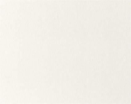 Обои Статус виниловые 914-20 на флизелиновой основе опт