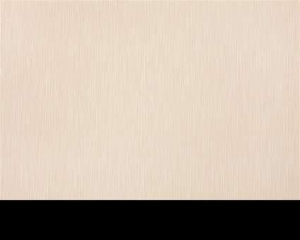Обои Статус виниловые 936-24 на флизелиновой основе опт